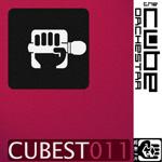 cubest 011